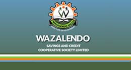 welcome to wazalendo