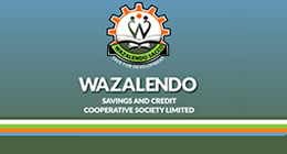 welcome to wazalendo